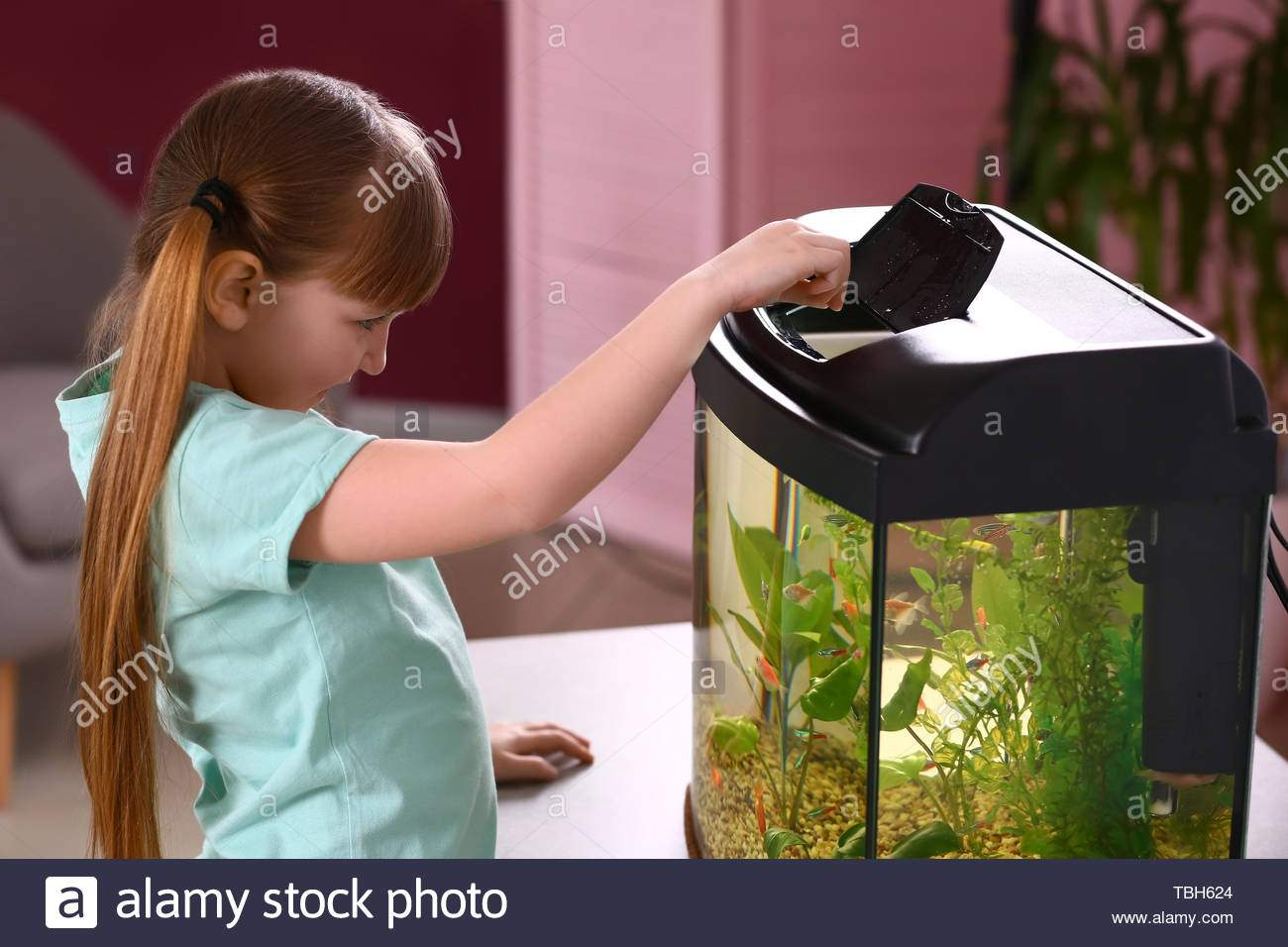 cute little girl feeding fish in aquarium TBH624